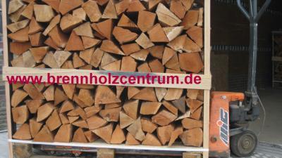 Brennholz Buche trocken auf Palette 25 cm.