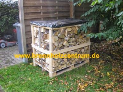 Brennholz trocken, Birke 25 cm länge auf Palette gestapelt.